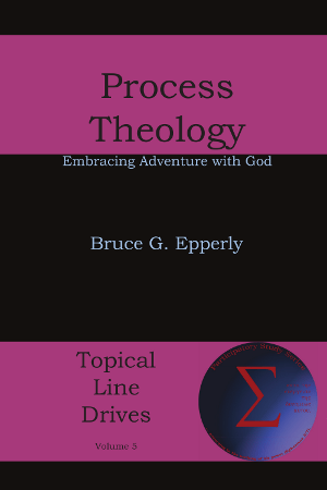 Process Theology Hardcover Special Price on Amazon.com