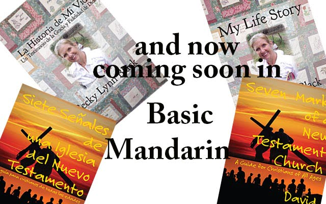 Coming Soon!  Books in Mandarin Chinese!