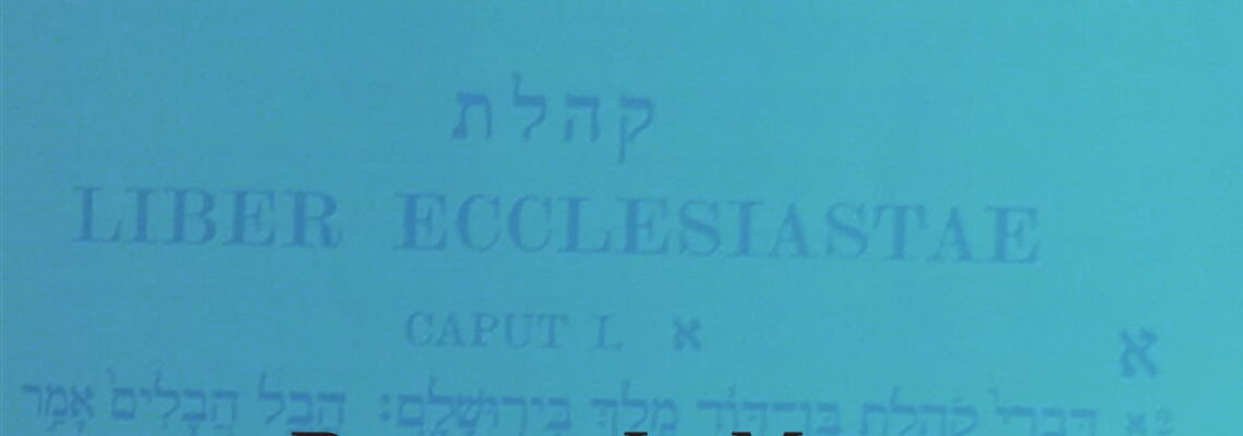 Ecclesiastes Participatory Study Guide